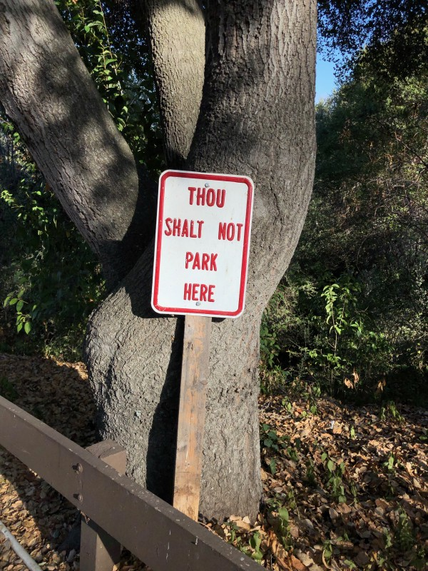 A parking sign that reads 'Thou Shalt not Park here'.